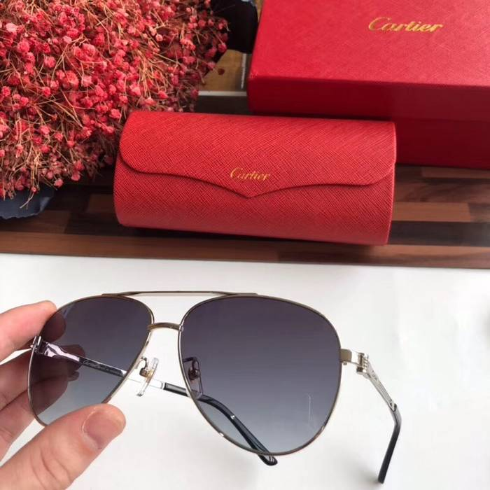 Cartier Sunglasses Top Quality C41051