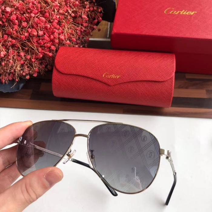 Cartier Sunglasses Top Quality C41052