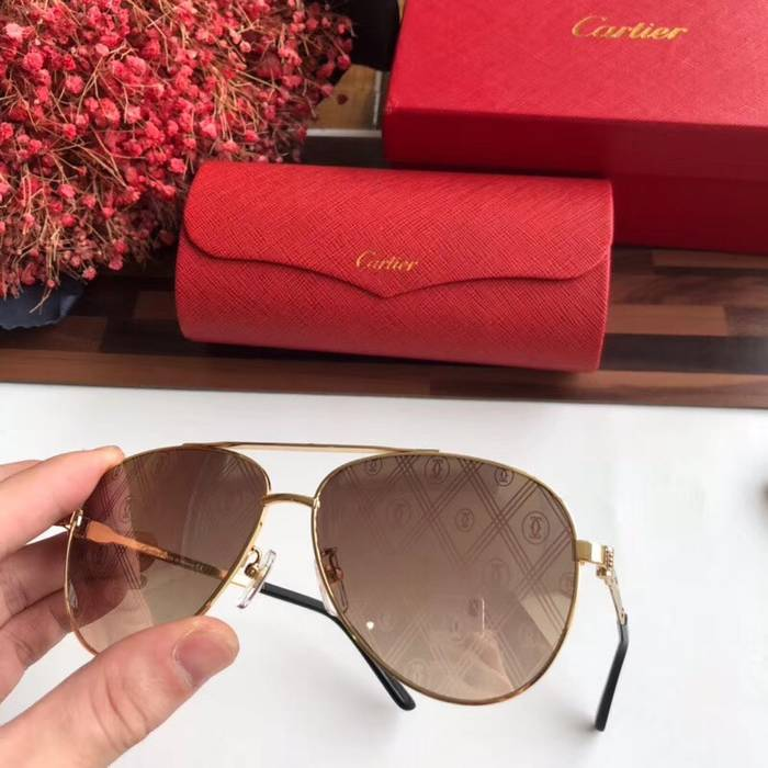 Cartier Sunglasses Top Quality C41053
