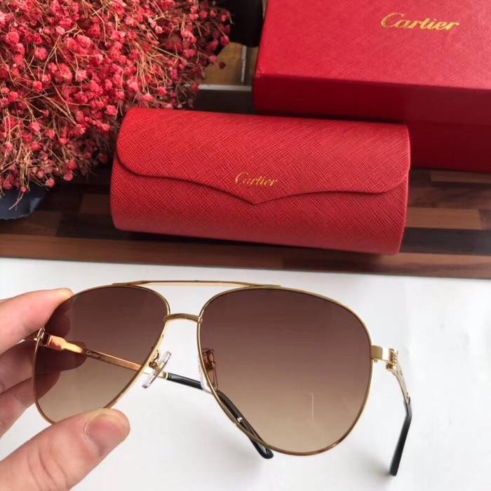 Cartier Sunglasses Top Quality C41054