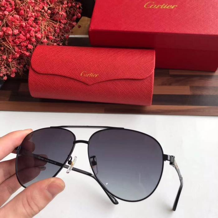 Cartier Sunglasses Top Quality C41055