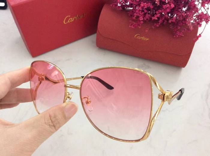 Cartier Sunglasses Top Quality C41059