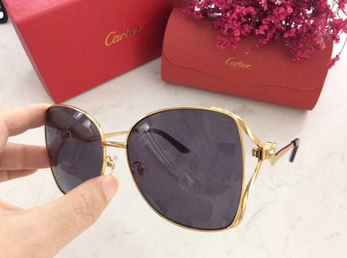 Cartier Sunglasses Top Quality C41060
