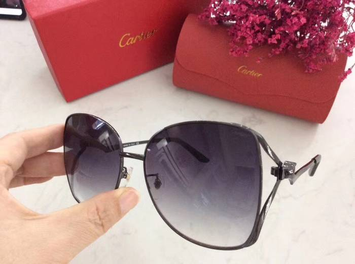 Cartier Sunglasses Top Quality C41063