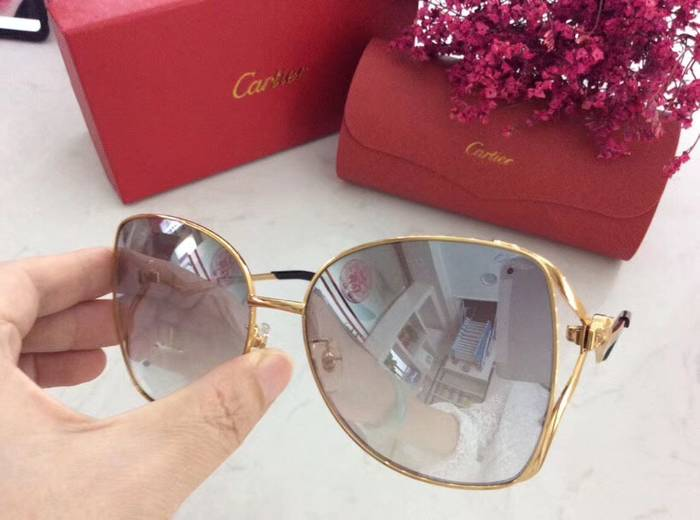 Cartier Sunglasses Top Quality C41064