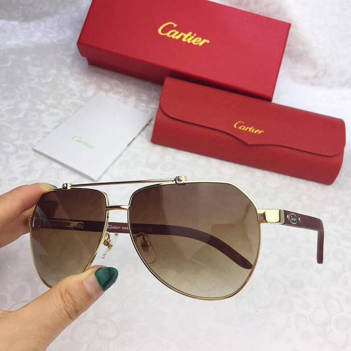 Cartier Sunglasses Top Quality C41089