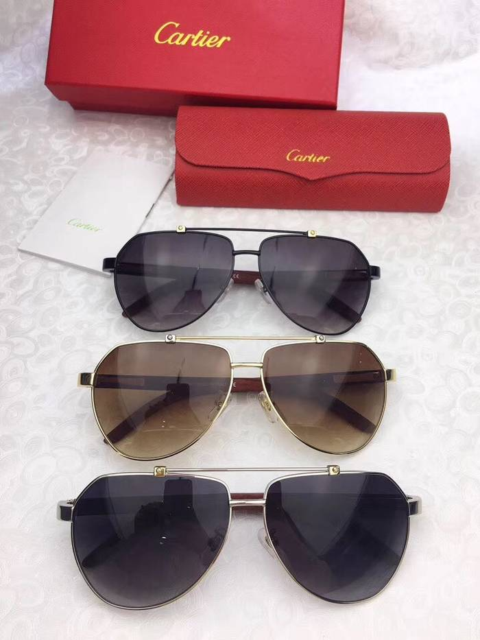Cartier Sunglasses Top Quality C41091