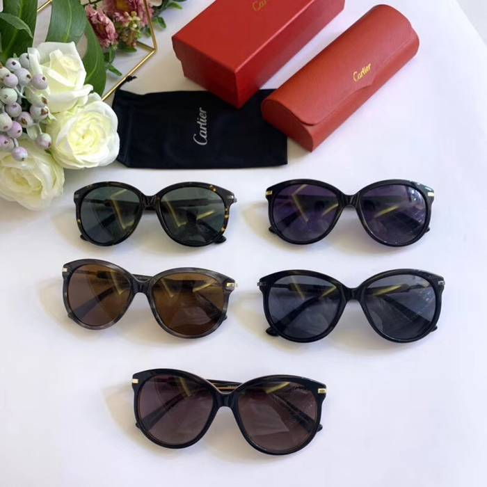 Cartier Sunglasses Top Quality C41092