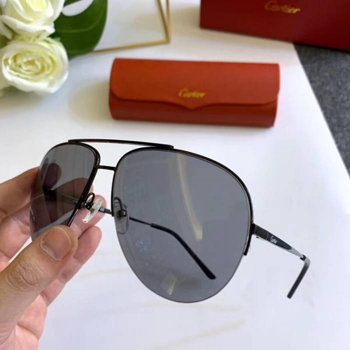 Cartier Sunglasses Top Quality C41100