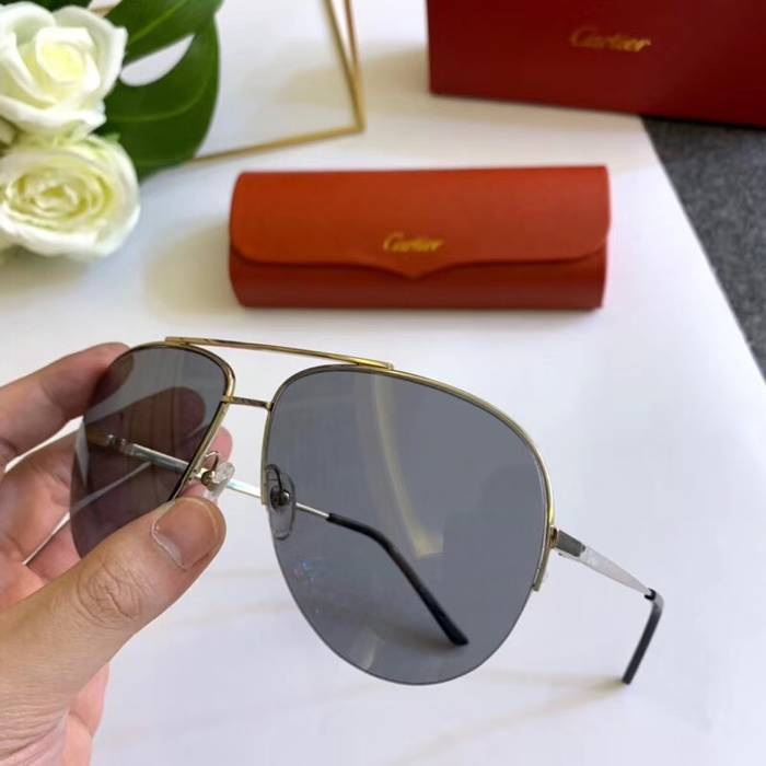 Cartier Sunglasses Top Quality C41101