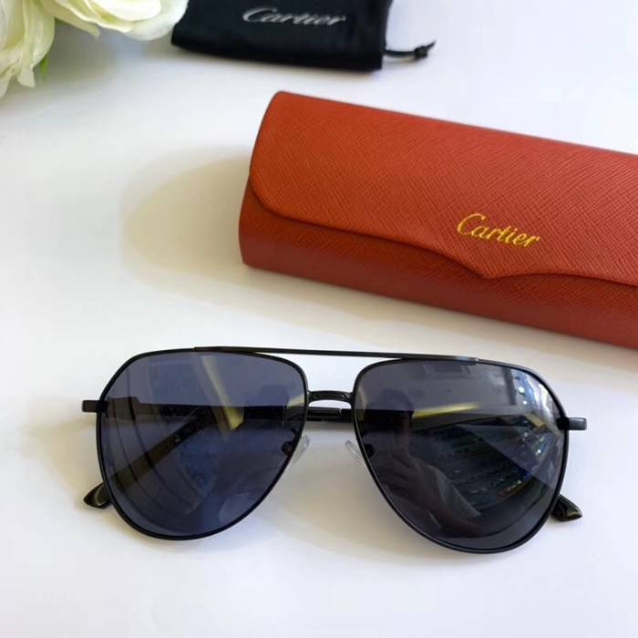 Cartier Sunglasses Top Quality C41109