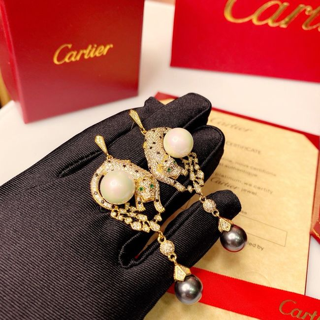 Cartier Earrings CE5448